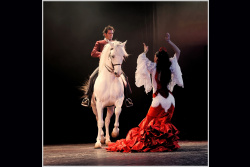 N°_8_SPECTACLE_BALEARES