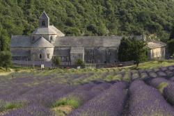 Abbaye de Sénanques-1929